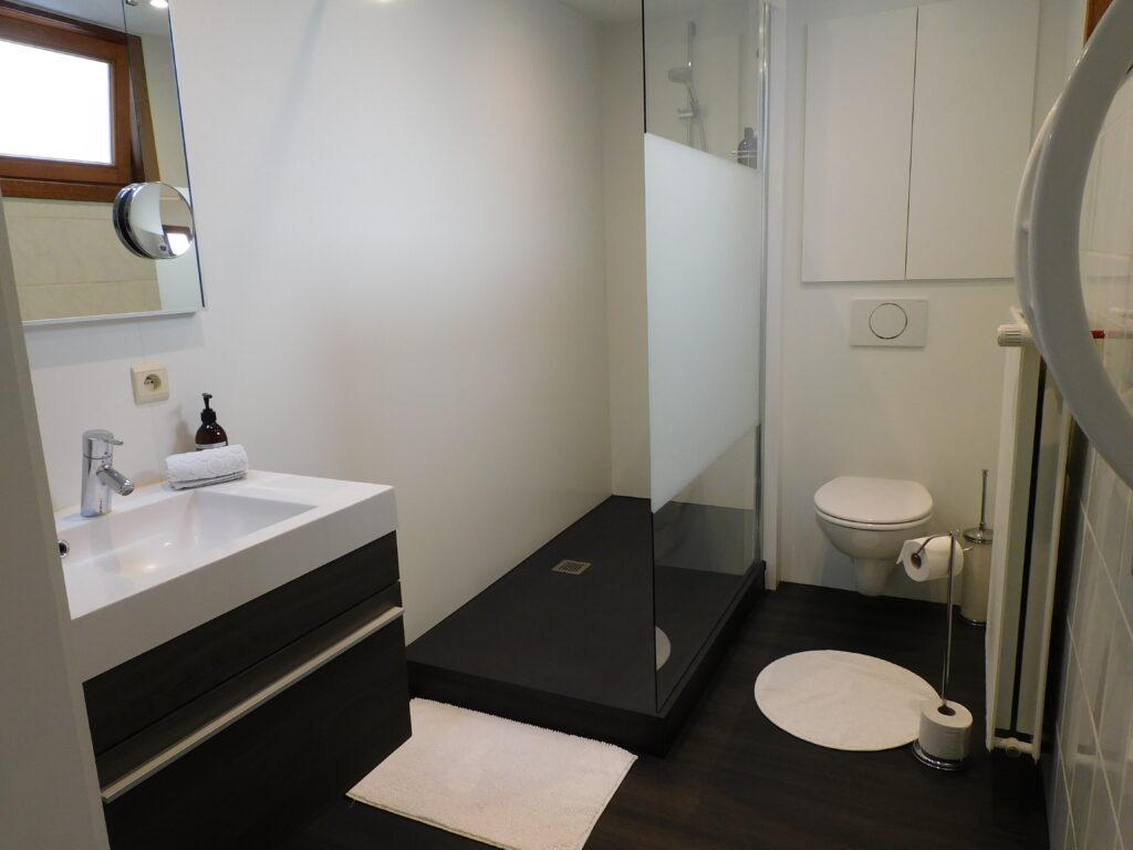 Badkamer gelijkvloers douche toilet lavabo